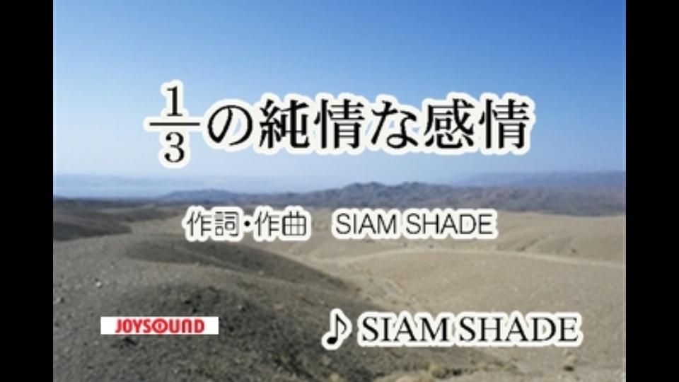 シャム シェイド 三 分 の 一 の 純情 な 感情