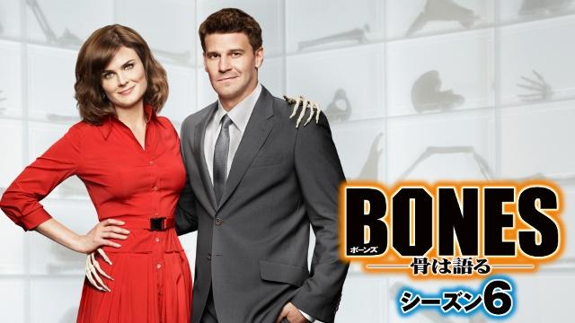 【ディズニー 映画 一覧】BONES – 骨は語る – シーズン6