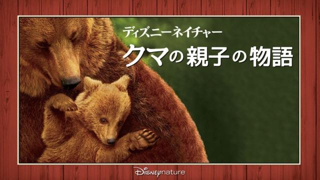 ディズニーネイチャー クマの親子の物語は見ないべき?視聴可能な動画配信サービスまとめ。