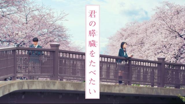 【恋愛 映画 おすすめ】君の膵臓をたべたい