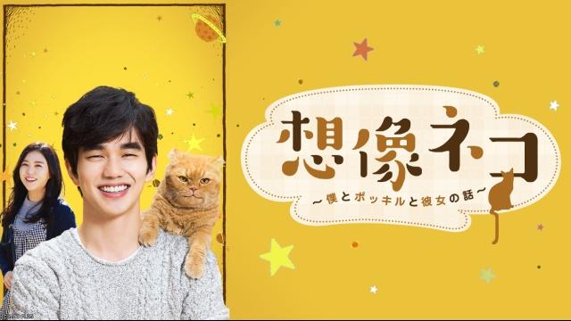 【コメディ 映画】想像ネコ~僕とポッキルと彼女の話~