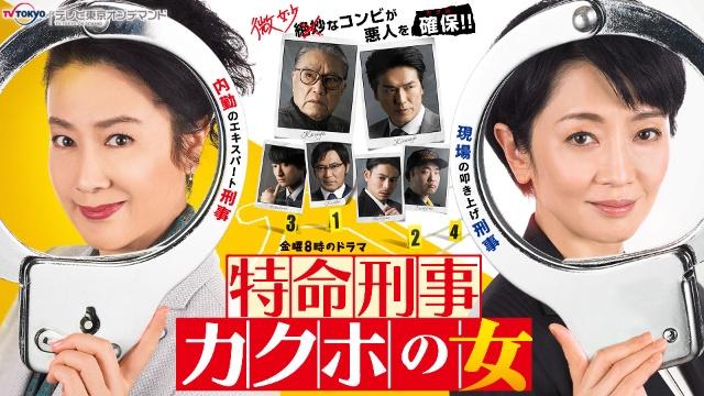 特命刑事カクホの女 テレビ東京オンデマンドは見るべき?見ないべき?視聴可能な動画配信サービスまとめ。