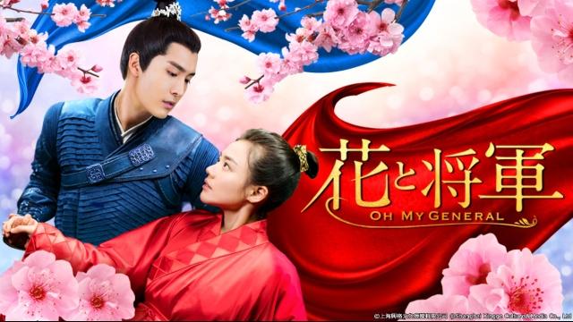 【中国 映画 おすすめ】花と将軍~Oh My General~