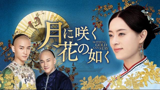 【中国 映画 おすすめ】月に咲く花の如く